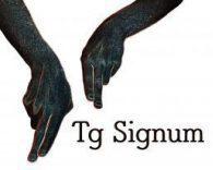 Tg Signum